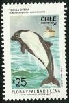 Sellos de America - Chile -  TONINA OVERA - FLORA Y FAUNA DE CHILE