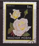 Sellos de Europa - Hungría -  serie- Rosas