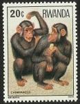 Sellos del Mundo : Africa : Rwanda : CHIMPANZES