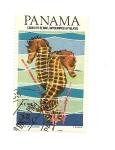 Sellos del Mundo : America : Panamá : Flora y Fauna   Caballito de Mar