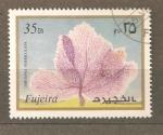 Sellos de Asia - Emiratos Árabes Unidos -  FUJEIRA