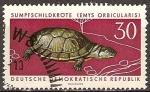 Sellos de Europa - Alemania -  Animales Protegidos-Estanque de tortugas (Emys orbicularis)DDR.