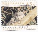 Sellos de Oceania - Australia -  Ardilla
