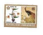 Sellos del Mundo : Africa : Rwanda : Osaka(Japón)  Expo 70 - Pavo Real y Planta ave del paraiso