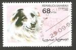 Sellos de Africa - Marruecos -  Perro de raza