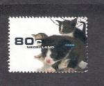 Sellos de Europa - Holanda -  Gatos