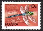 Sellos de Europa - Polonia -  Anax Imperator
