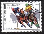 Sellos de Europa - Bulgaria -  Polo