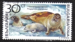 Sellos del Mundo : Europa : Bulgaria : Phogophoca graenlandica
