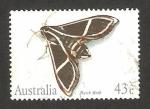 Sellos de Oceania - Australia -  1202 - Mariposa hawk moth