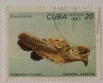 Sellos del Mundo : America : Cuba :  Mi CU2769