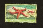 Sellos de Asia - Emiratos Árabes Unidos -  UMM AL QIWAIN -  Fauna Marina  - Estrella de Mar