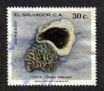 Sellos del Mundo : America : El_Salvador : Ostra
