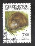 Sellos del Mundo : Asia : Uzbekistán : Fauna of Uzbekistan