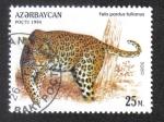 Sellos del Mundo : Asia : Azerbaiyán : Gatos Salvajes