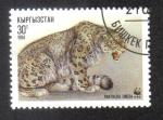 Sellos del Mundo : Asia : Kirguistán : Leopardo de Las Nieves