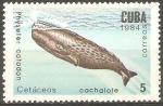 Sellos de America - Cuba -  CETÀCEOS.  PHYSETER  CATODON.