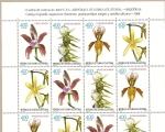 Sellos del Mundo : Africa : Guinea_Ecuatorial : FLORA -   Orquídeas
