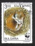 Sellos del Mundo : Europa : Bulgaria : Hamsters