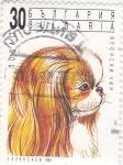 Sellos del Mundo : Europa : Bulgaria :  perro de raza