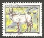 Sellos de Europa - Alemania -  2184 - Antilope