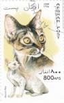 Sellos del Mundo : Asia : Afganistán :  gatos de raza