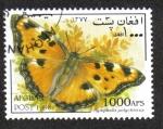 Sellos del Mundo : Asia : Afganistán : Mariposas