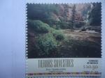Sellos de America - México -  Tierras Silvestres - Zion (EStados Unidos)