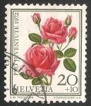 Sellos del Mundo : Europa : Suiza : Rosa milagro