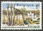 Sellos de Europa - Bélgica -  Hautes Fagnes