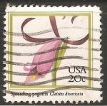 Sellos de America - Estados Unidos -  Orquidea Cleistesiopsis divaricata