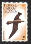 Sellos del Mundo : America : Islas_Turcas_y_Caicos : Pájaros nativos
