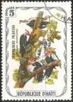 Sellos del Mundo : America : Haití : pileated woodpecker-Pájaro carpintero