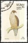 Sellos del Mundo : Asia : Omán : Peregrine-Falcon peregrino