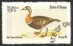 Sellos del Mundo : Asia : Omán : red breasted goose-Ganso de peito encarnado