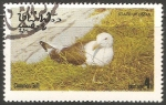 Sellos del Mundo : Asia : Omán : Common gull-Gaviota común