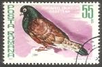 Sellos del Mundo : Europa : Rumania : Porumbel zburator orbetean