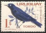 Sellos del Mundo : America : Uruguay : Tordo