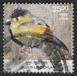 Sellos de Asia - India -  Ave, liocichla bugunorum