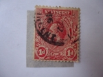 Sellos de America - San Vicente y las Granadinas -  King George V. San Vicente y las Granadinas-Colonias Inglesas.