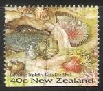 Sellos del Mundo : Oceania : Nueva_Zelanda : Estuarino triplefin y cats eye shells