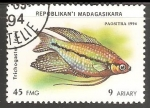 Sellos del Mundo : Africa : Madagascar : Trichogaster leeri