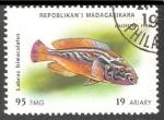Sellos del Mundo : Africa : Madagascar : Labrus bimaculatus