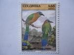 Sellos de America - Colombia -  Barranquero (Momotus momota)