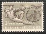 Sellos del Mundo : Europa : Bélgica : Declaración Universal de los Derechos Humanos