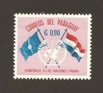 Sellos del Mundo : America : Paraguay :  Homenaje a las Naciones Unidas
