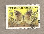 Sellos del Mundo : Asia : Uzbekistán : Mariposa Neohipparchia fatua