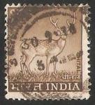 Sellos del Mundo : Asia : India : ciervo en la noche
