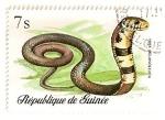 Sellos del Mundo : Africa : Guinea : Reptiles y serpientes. Cobra.