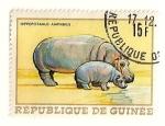 Sellos del Mundo : Africa : Guinea : Animales africanos. Hipopotamo.